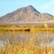 Las Vegas Wetlands Park Nature Preserve