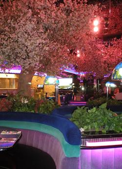 Peppermill Vegas Feature